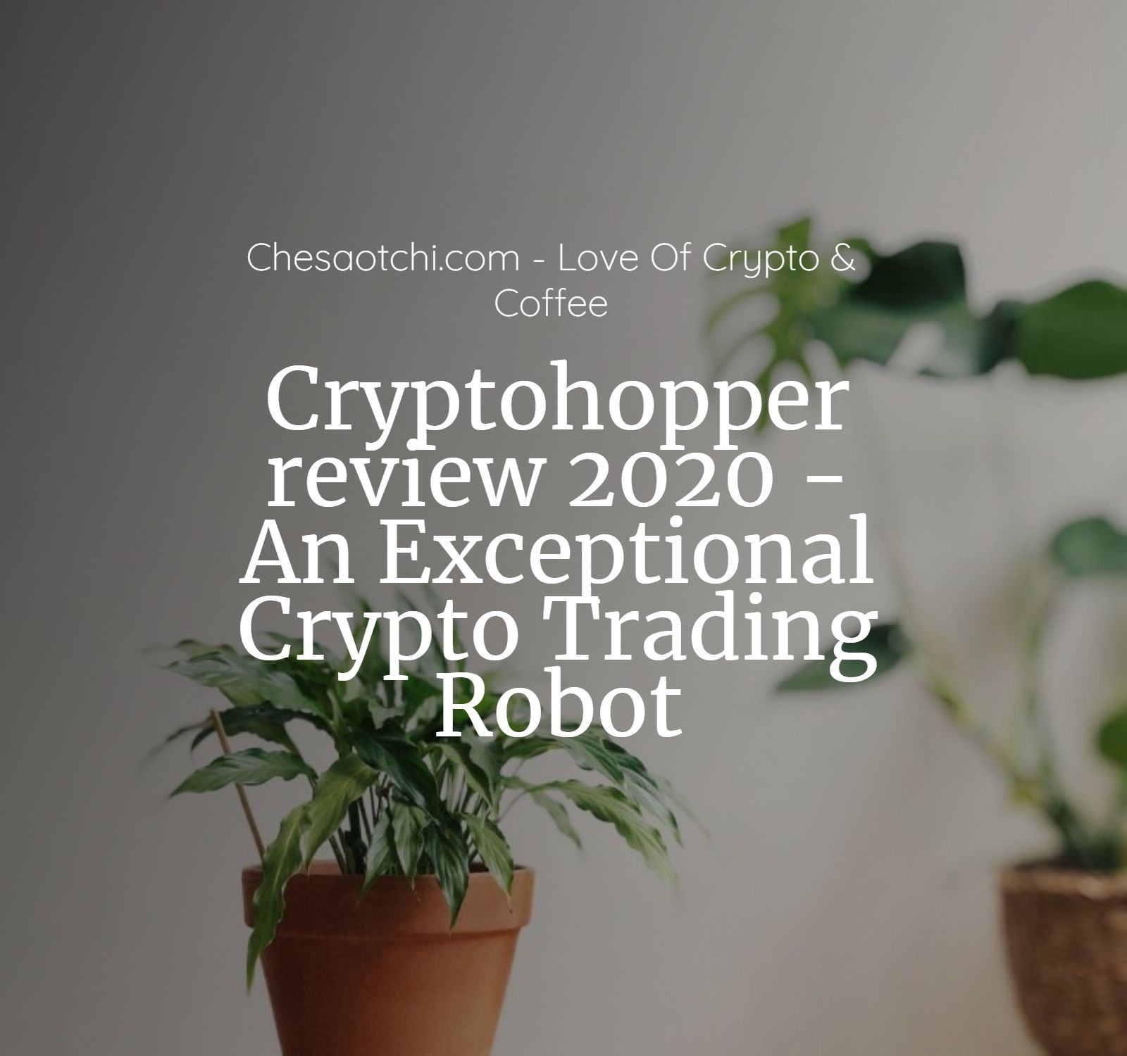 cryptohopper_review_2020_an_exceptional.jpg