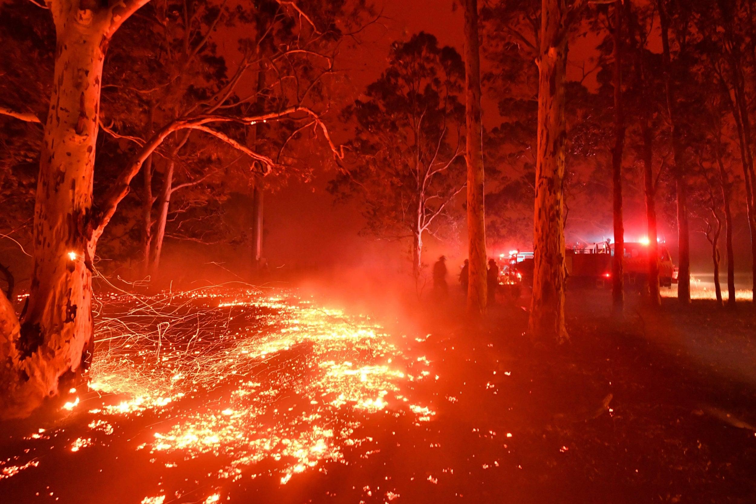 Australiafires11.jpg