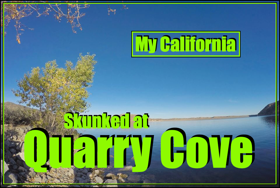 Quarry cove cover1.png