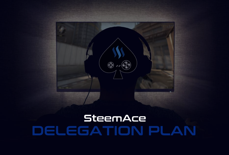 delegation plan picture.png